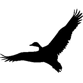Серый гусь