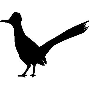 Земляная кукушка