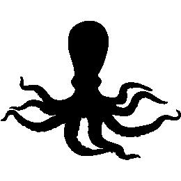 Осьминог обыкновенный